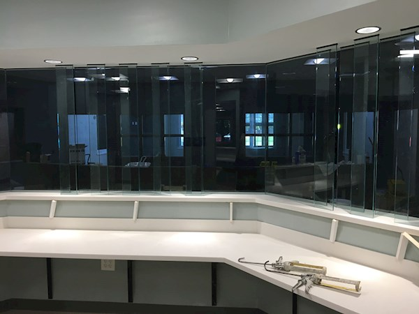 Construction Update 9: Nurse desk countertop and glass dividers
